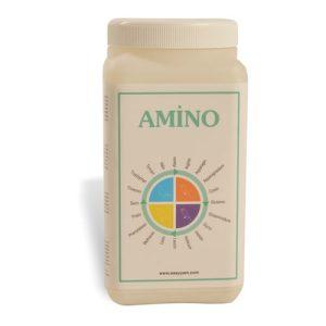 Amino - Easyyem