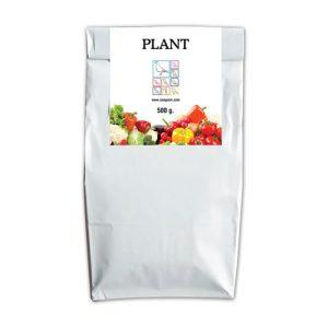 Plant - Easyyem
